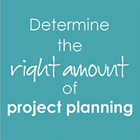 Right amount Project Planning
